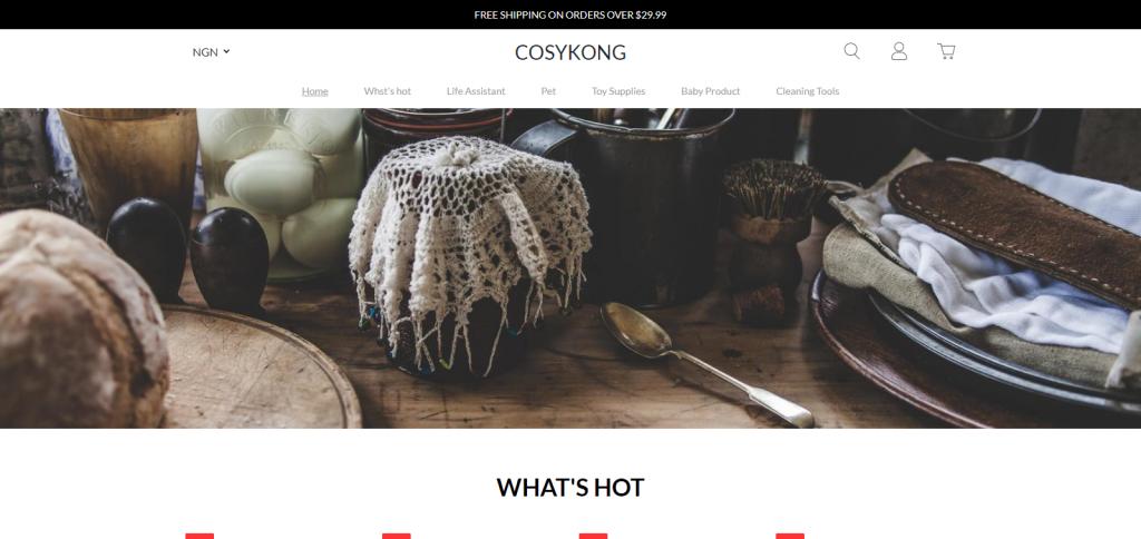 Cosykong Homepage Image
